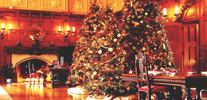 Luxury Christmas Trees  Luxury Christmas Trees Luxury Christmas Trees 6