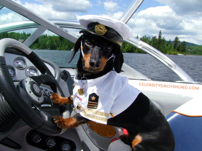 HOW TO BECOME A BOAT CAPTAIN 3  HOW TO BECOME A BOAT CAPTAIN HOW TO BECOME A BOAT CAPTAIN 3