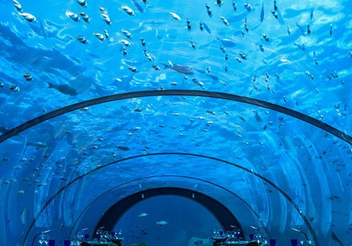 Take a Look at the Best Underwater Restaurants in the World
