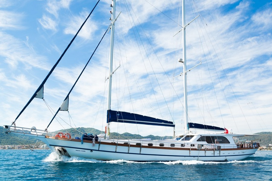 tyba yacht charter show TYBA Yacht Charter Show: what you need to know about the event! white rose Kopyala