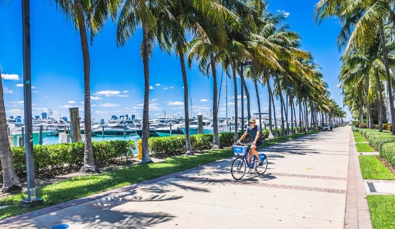 miami beach marina Miami Beach Marina: More Than A Marina, An Experience Miami Beach Marina More Than A Marina An Experience 26